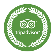 Home Company Tours Transportation Contact Recommended On Tripadvisor